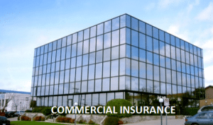 Florida Commercial Insurance