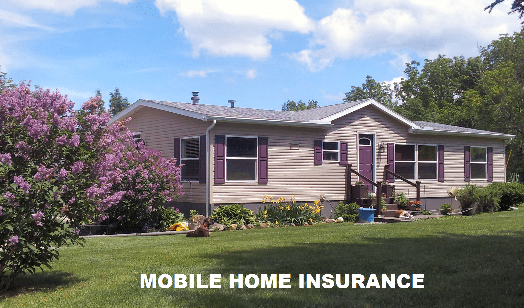 Mobile Home Flood Insurance