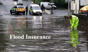 fl flood insurance