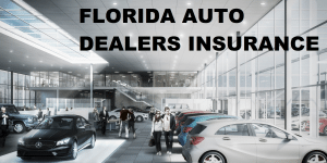 FLORIDA AUTO DEALER