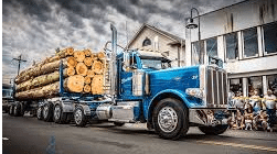 FLORIDA, LOG, LUMBER, HAULER, INSURANCE, TRUCK